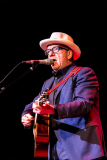 ELVIS-COSTELLO-115