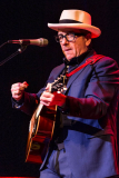 ELVIS-COSTELLO-116
