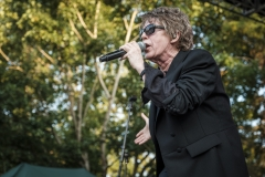 Psychedelic Furs-24